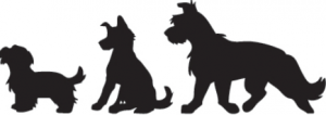 Hundesalon Anja Knüppel